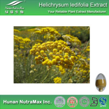 Food Grade Immortelle Extract,Immortelle Flower Extract,Immortelle Extract Powder 4:1~20:1