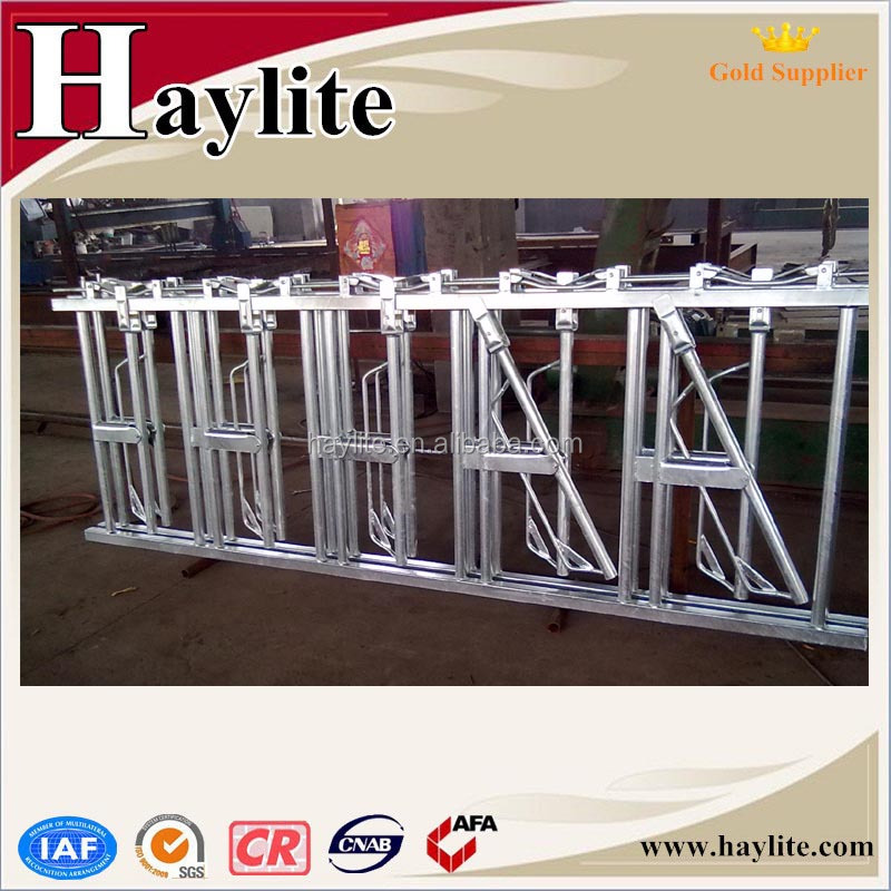 hot dipped galvanized dairy cow Headlocks for sale