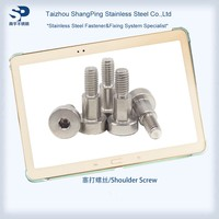 Stainless Steel Shoulder Screw