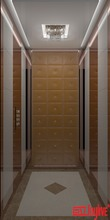 Building Elevators Pricing Residential Low cost customized commercial Passenger Elevator
