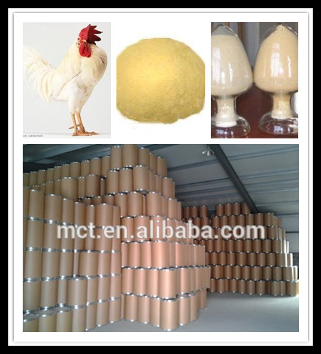 Hot sell yeast powder & high quality