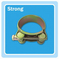 OEM&ODM accept competitive price compression robust hose clamp