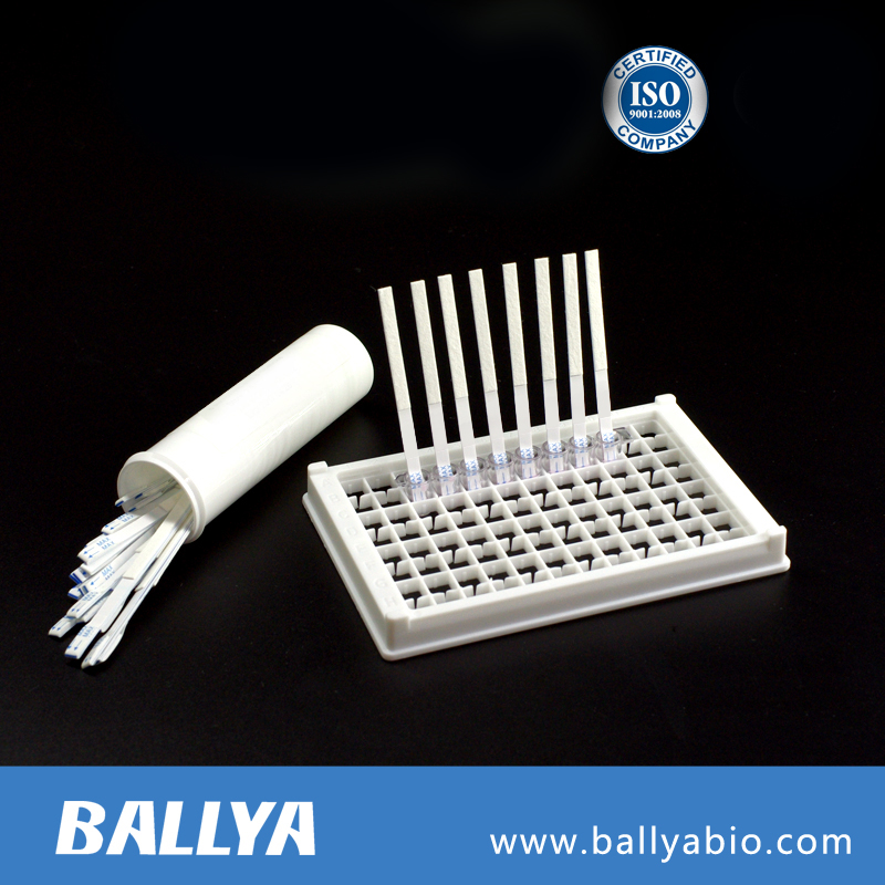 Aflatoxin B1 Rapid Test kit/Detection of Aflatoxin B1 residue in food