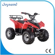 famous brand adult electric quad bike/atv/quad's