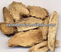 Large quality costus root for sale