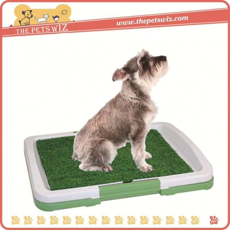 Toilet for cats training p0wDV new model toilet indoor dog toilet for sale