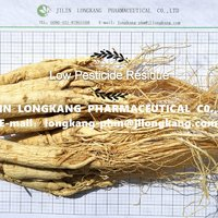 The Dried Root Of Ginseng