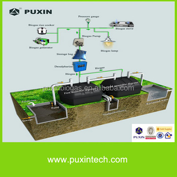 Toilet sewage and waste water treatment biogas digester