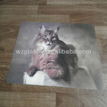 lenticular 3D picture of animal