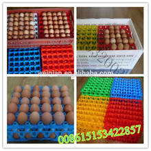 Environmental protection chicken eggs ray transport chicken eggs
