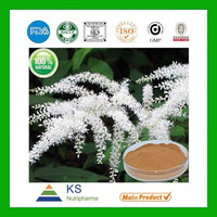 Manufacturer supply 100% Pure Natural Black Cohosh root extract 2.5% Triterpene Glycosides