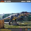 authentic Allosaurus dinosaur for museum