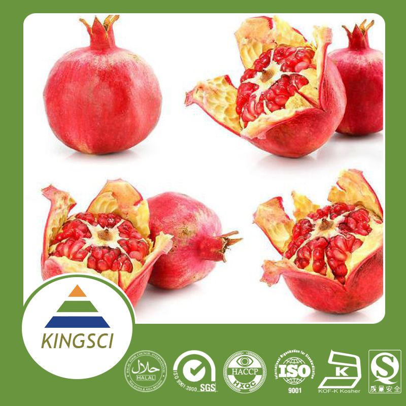 Free Sample Ellagic Acid China Herbal Pomegranate Bark/Peel Extract Powder Manufcturer