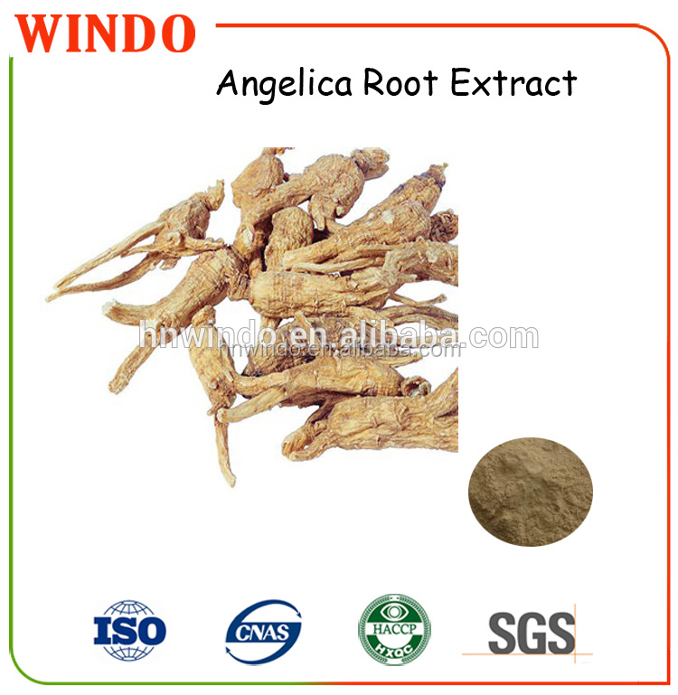 Highly Recommended Herbal Angelica Extract(Dong Guai) Liguistlide1.0%/Ferlic Acid 1%