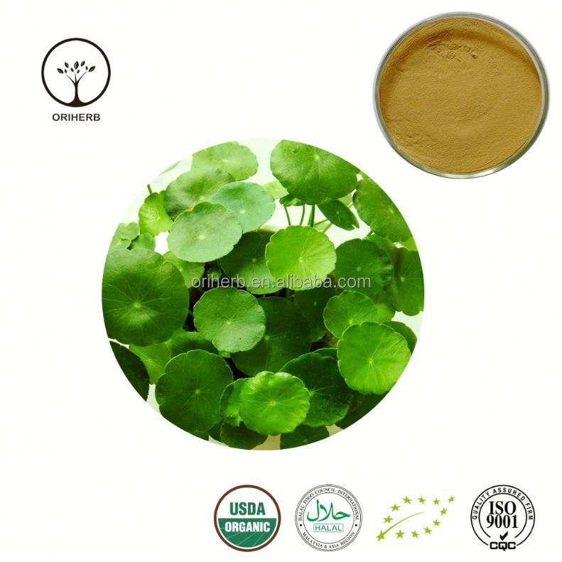 Natural water soluble gotu kola extract.40% Asiaticosides