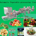 Automatic vegetable processing line/salad/IQF frozen vegetable production line