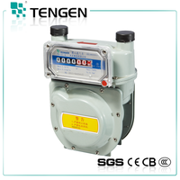 Hot sales good price high quality tamper heat TG-J1.6/2.5 household diaphragm type fuel gas meter