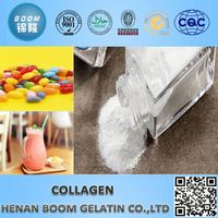 Wholesale fish collagen protein