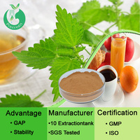 Herbal extract Nettle extract powder nettle leaf powder