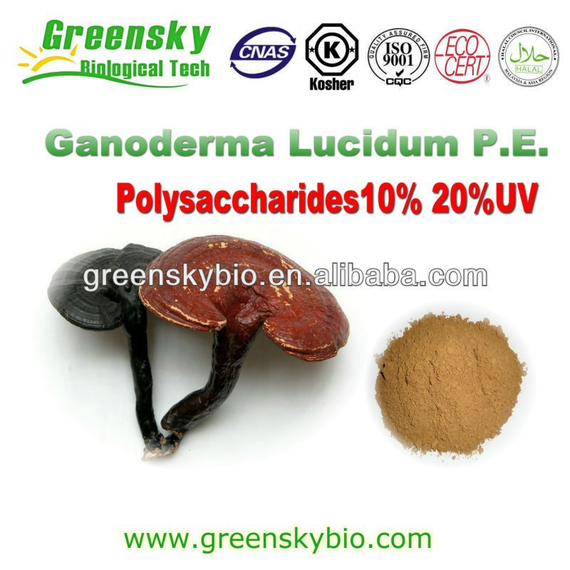 Reishi Mushroom extract China Manufacturer free sample reishi extract,Reishi triterpene & polysaccharide,Reishi Mushroom extract