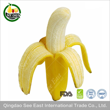 Best buy HACCP certified products freeze dried fruit FD banana bananas