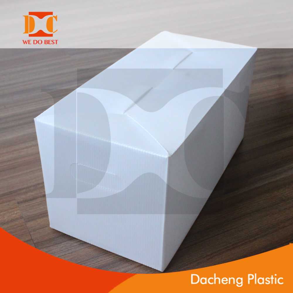 Folding PP Corrugated Plastic Reusable Box