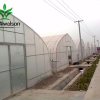Facotry Price Chicken Greenhouse Chicken House