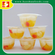 Fruit Cocktail in Syrup in Cup