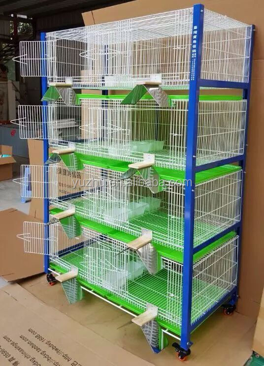 how to clean a birdcage after a bird dies