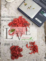 2016 new crop GOJI BERRY----GRADE A & B(Good price)
