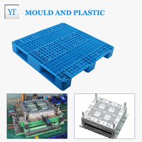 Professional two decades factory making plastic pallet injection mold