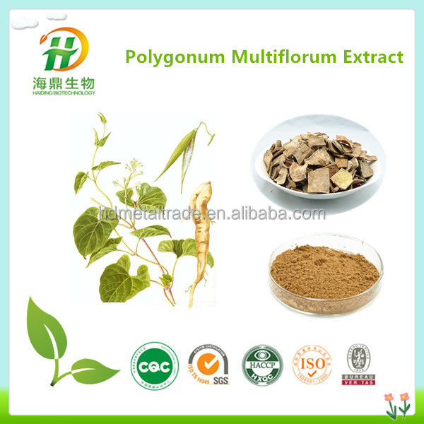 Fo-ti extract/Tuber fleeceflower root extract/polygonum multiflorum plant extract for hair coloring