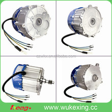 brushless dc gear motor for electric rickshaw /tricycle/bicycle