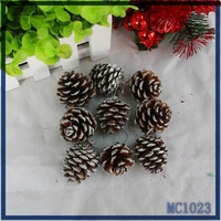 Made in China ! new decorations for christmas tree cheap wholesale hottest sale high quality brown christmas pine nut