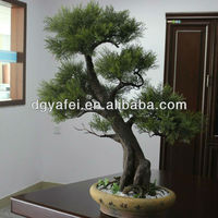 Artificial ficus bonsai, evergreen trees bonsai, podocarpus trees