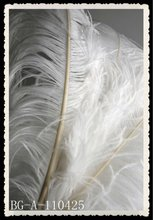 2012 wholesale artificial white ostrich feathers