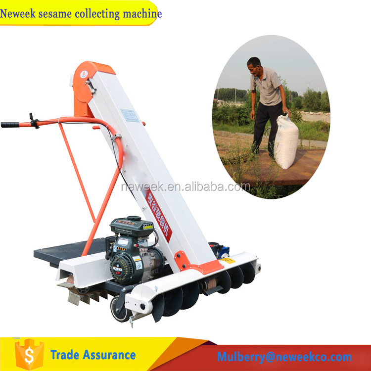 Neweek automatic grain cleaning cocoa bean bagging sesame collecting machine