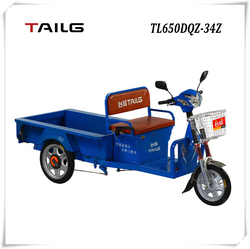 tailg 3 wheel high carrying steel electric moped cargo tricycle for sales TL650DQZ-34Z