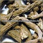 Indian Costus (Saussurea Lappa 6-1) Root, Dry Extract
