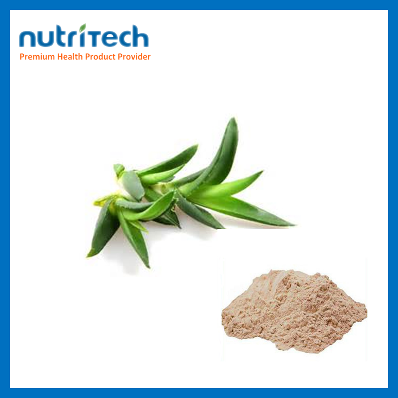 Seed Extract 98% Aloe Emodin high potency and benefits