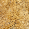 Empire gold marble tile for marble floor and skirting with low price