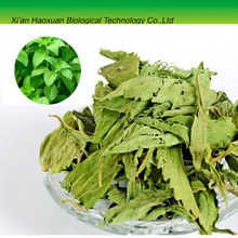 Chinese Manufacturer Supply High Quality stevioside Extract,stevioside Extract80~90% Steviosides, Reb. A 40%~90%
