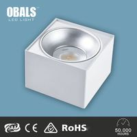 Professional CE RoHS Low Heat cabinet led ceiling lighting