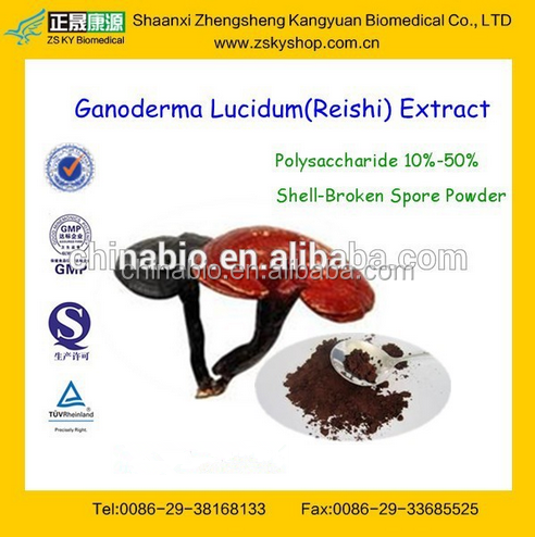 GMP Factory Supply Free Sample Red Reishi Mushroom Extract