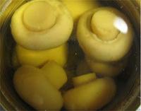 canned oyster mushroom in brine