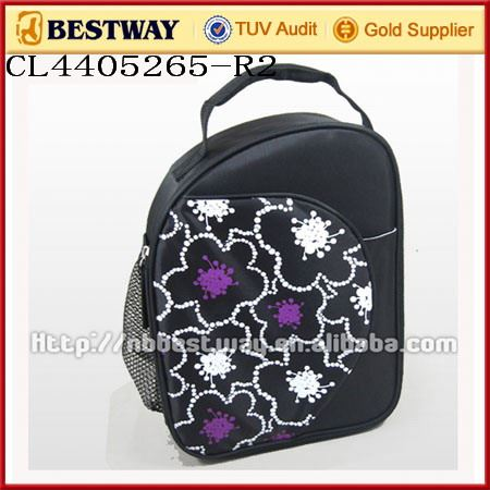 electric cooler bag for medication