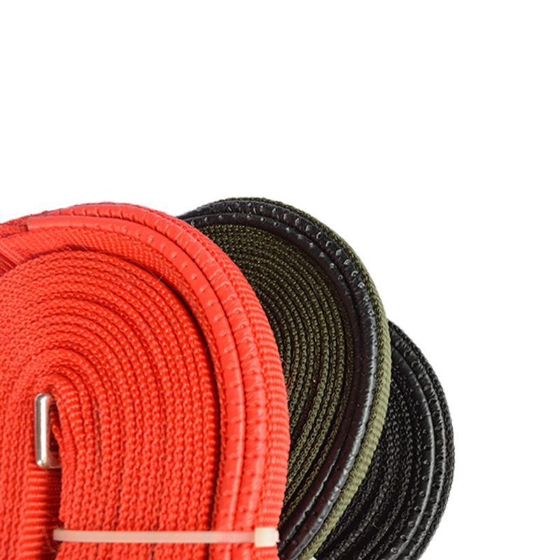 Pet supplies lengthened cotton drawstring training Leash dog training home factory direct chain traction rope 3 specifications