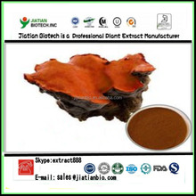 100% Pure Ntural Antrodia Cinnamomea Extract Powder With 50% polysaccharide And Triterpene