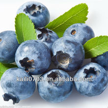 fresh blueberries wholesale artificial blueberries packaging