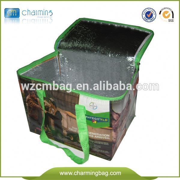 New design top quality reusable good price insulated cooler bag